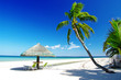 relaxing tropical scenery