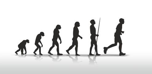 evolution 1308a