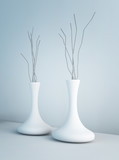 Modern Design Vase | Architecture Interior