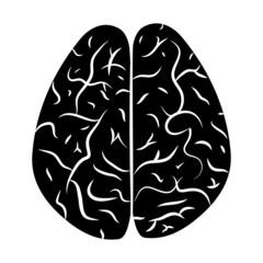 Brain 2.