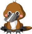 Fun zoo. Platypus