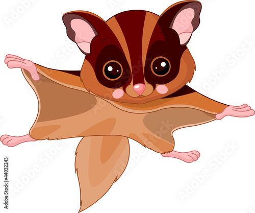 Fun zoo. Flying squirrel