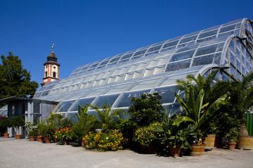 Palmenhaus Insel Mainau