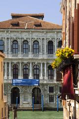 Palazzo Ca Pesaro Venezia