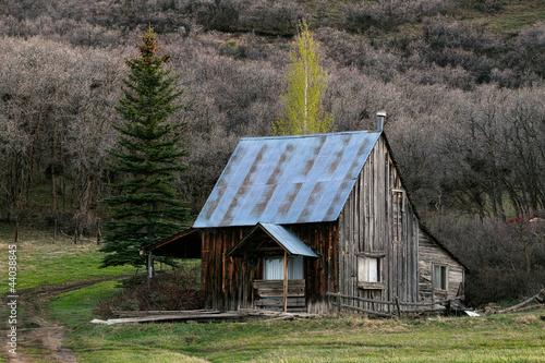 Cabin log house