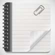 vector blank notepad