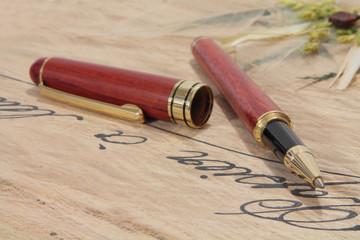 stylo de bois
