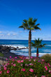 playa Jardin in Puerto de la Cruz, Tenerife, Spain