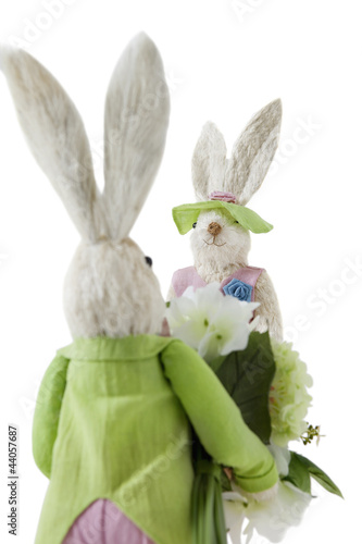 Back view of Bunny with flower bouquet approaching female Rabbit over white background