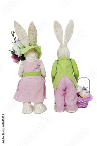 Back view of Rabbit couple standing over white background