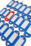 Close-up of red surrounded with blue key ring tags