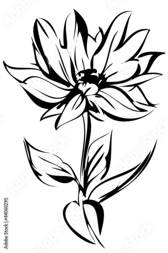 a sketch of blossoming out flower on a stem