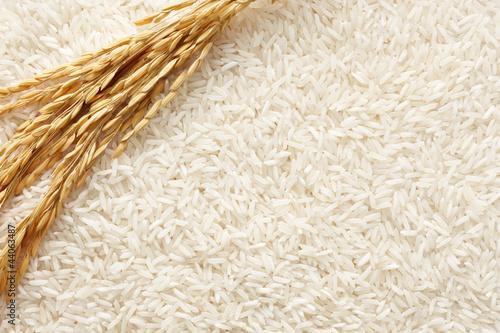 Fotobehang Granen rice background
