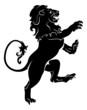 Heraldic rampant lion - 44063627