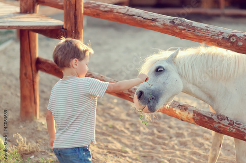 on a farm the boy in jeans with white a pony gets acquainted