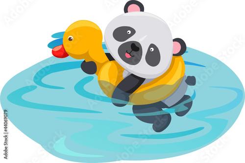 panda swimming with duck tube