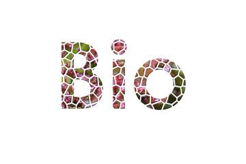 Bio - Schrift aus Salat