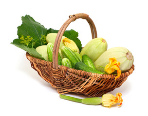 fresh marrow and cucumbers in a basket
