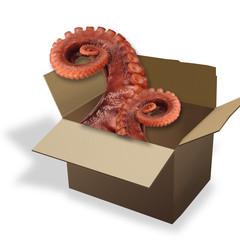 Octopus Surprise.