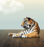 tiger under the sky with cloud on wood floor - Fine Art prints