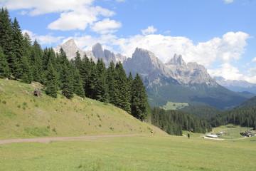 Sentiero per San Martino di Castrozza