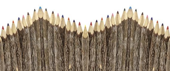 haie de crayons bois