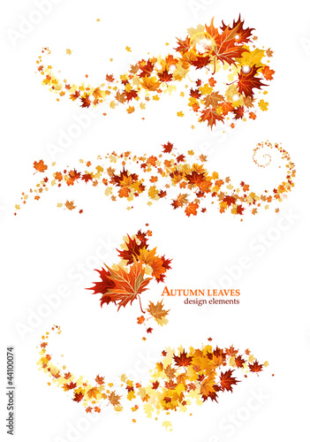 Autumn leaves design elements - 44100074
