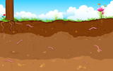 Fototapety Layer of Soil
