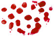 Salient blood (red paint) blots (splatters) isolated on white