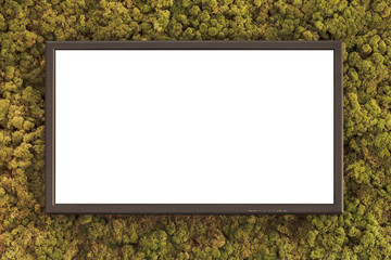 Flat television on a green moss covered background