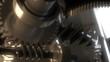 Metal Gears in Perpetual Motion. Loop