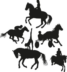 equestrian sport set