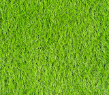 Artificial Green Grass Field poster