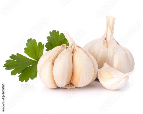 Garlic bulb and parsley leaf