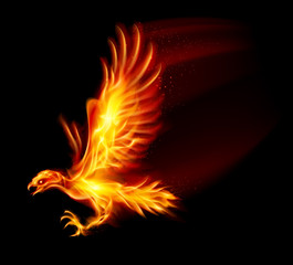 Flaming Hawk