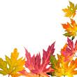 Bunter Herbst: Karte mit fallenden Blättern