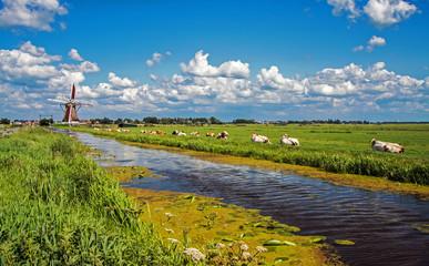 Landscape ......Netherlands