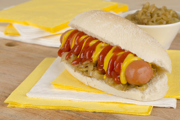 Simple Hot Dog with mustard and ketchup & caramelized onions