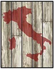 italia su pannelli legno vettoriale