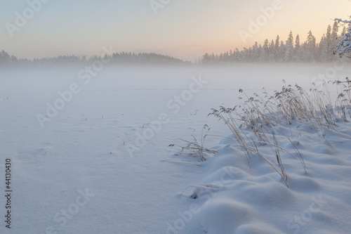 The frozen winter lake in wood under snow © v3