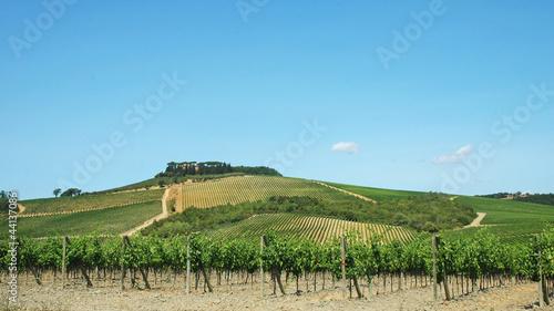 Dolci colline toscane, Toscana, Italia