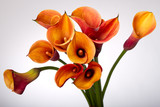 Fototapety Bouquet of Orange Calla lily
