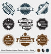 Vector Set: Mixed Fantasy Sport League Champion Labels