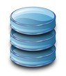 Glass Database Data Storage Icon