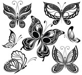 Black and white butterflies collection