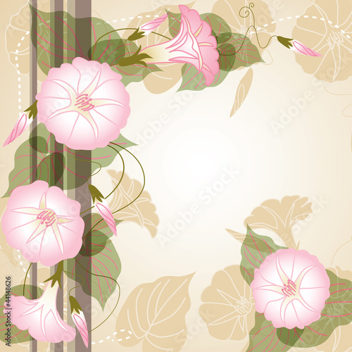 Beautiful background with pink Morning glory