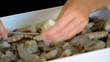 preparing shrimp skewers