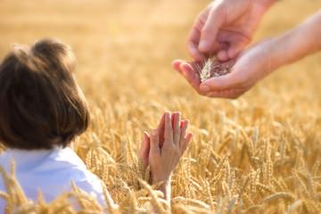 Prayer for a rich harvest
