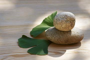Ginkgo und Steine