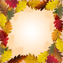 foglie di quercia in autunno